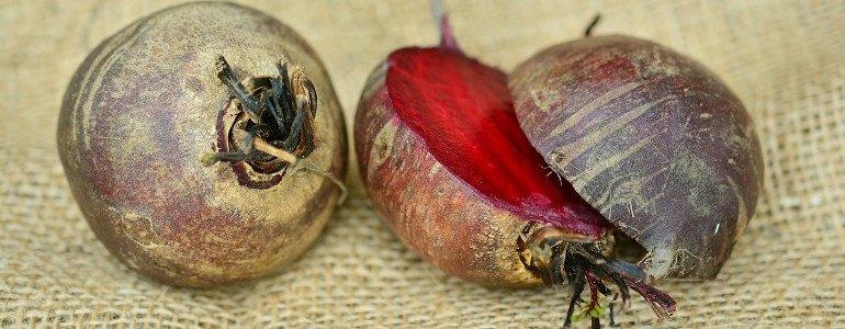 rote beete pulver selber machen
