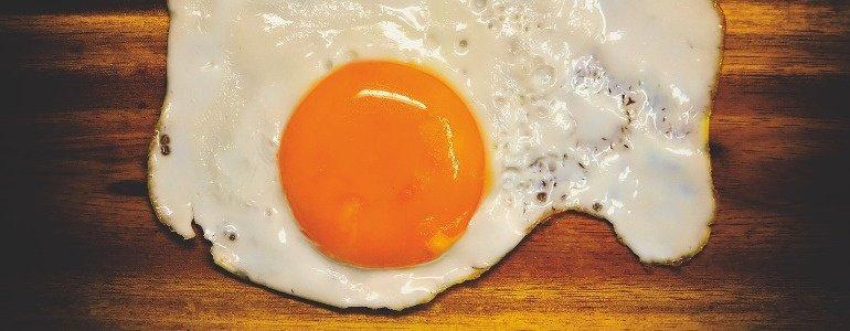 eiweiss protein