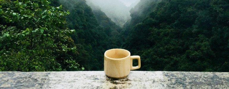 weisser tee tasse