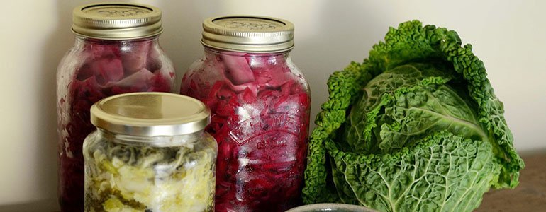 lebensmittel fermentieren